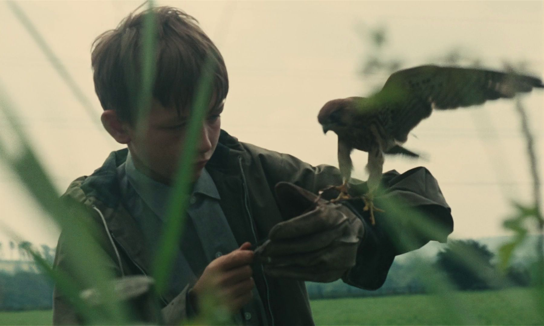 David Bradley in Ken Loach's KES (1970). Courtesy Park Circus Films. Playing February 27 - March 5.