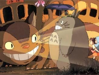 totoro e gattobus