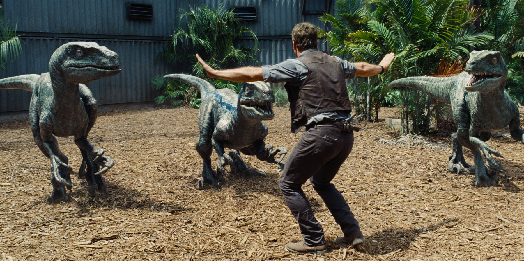 Jurassic World 6