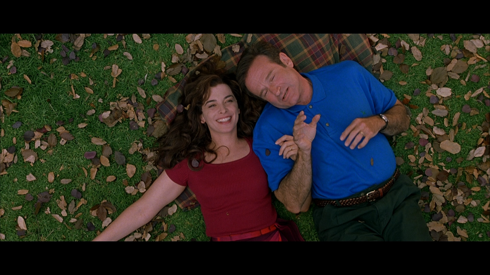 Robin Williams What Dreams May Come