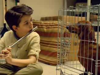 weiner-dog-film