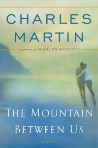the mountain between us book