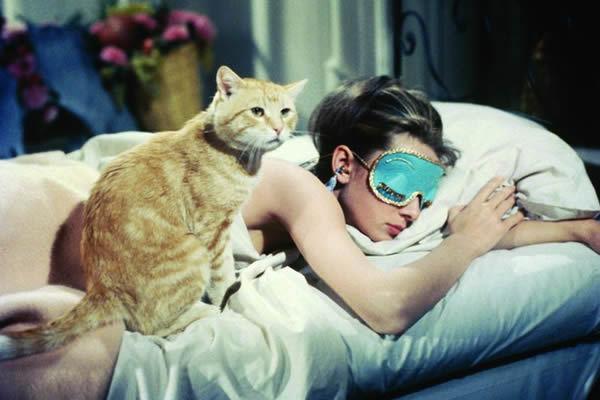 gatto colazione da tiffani