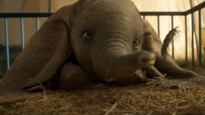 dumbo-cinema-tim-burton